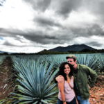 champs d'agave azul à Tequila
